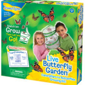Our Newly developed Butterfly Garden Home School Edition is a special four-sided Habitat with Ultra-Clear™ from viewing section.  A fold out learning panel also has interesting facts about each stage of the metamorphosis process.