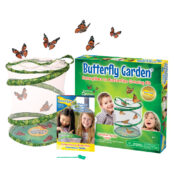 Insect Lore's best seller continues to stand the test of time. Grow and release Painted Lady butterflies.