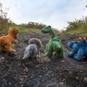 Keeleco dinosaurs (T-Rex, Stegosaurus, Triceratops and Diplodocus) featuring textured fabrics to create that unique dinosaur look, especially with their piercing eyes made with an embroidered finish. Soft toys that do not cost earth.