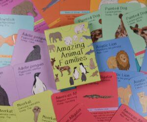 Amazing Animal Families Game