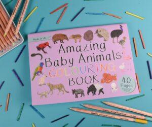 Amazing Baby Animals Colouring Book
