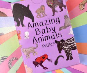 Amazing Baby Animals Pairs Cards
