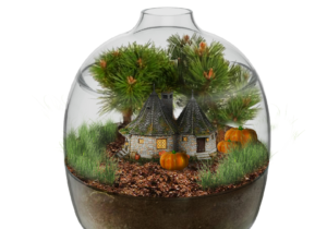 A great kit to create an ecosystem in thumbnail as a miniature reproduction of Hagrid's hut. A simple way to teach children the importance of plant care.  Assemble, decorate, water and observe the mini prohibited forest.