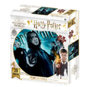 Slytherin New 500pc Prime 3D puzzle using the latest 3D lens to give great depth and motion to the image. Puzzle size 61cm x 46cm. Item code: HP32555