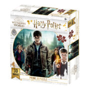 Harry Potter New 500pc Prime 3D puzzle using the latest 3D lens to give great depth and motion to the image. Puzzle size 61cm x 46cm. Item code: HP32559